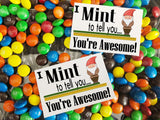 Mint to Tell You Candy Bag Topper