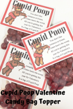 Cupid Poop Valentines Day Candy Bag Topper