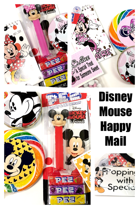 Disney Mouse Happy Mail Care Package Gift