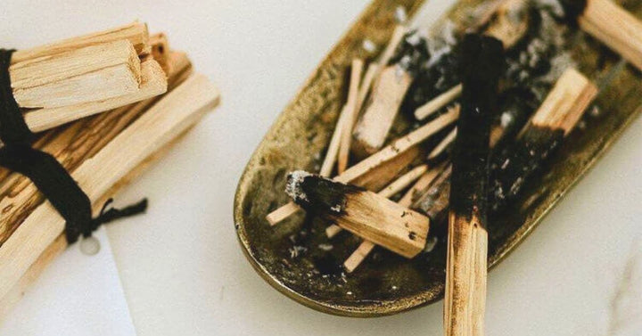 SPOTLIGHT ON PALO SANTO:  This Spiritual Wood Is All About Good Vibes