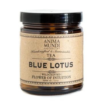 ANIMA MUNDI Blue Lotus Intuition Tea-Ingestible-Luvi Beauty & Wellness