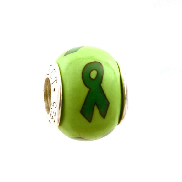 Leukemia/Kidney Green Ribbon on Green Charm