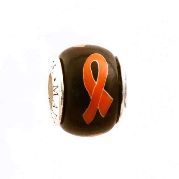 Kidney Cancer/Leukemia Orange Ribbon on Black Charm