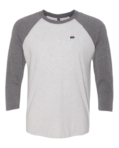 Next Level Unisex Tri-Blend Raglan Tee