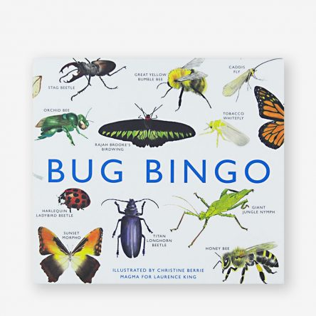 Laurence King, Bug Bingo