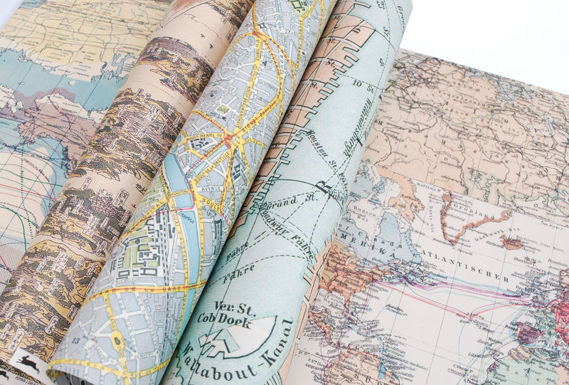 Pepin Press Maps Gift and Creative Papers