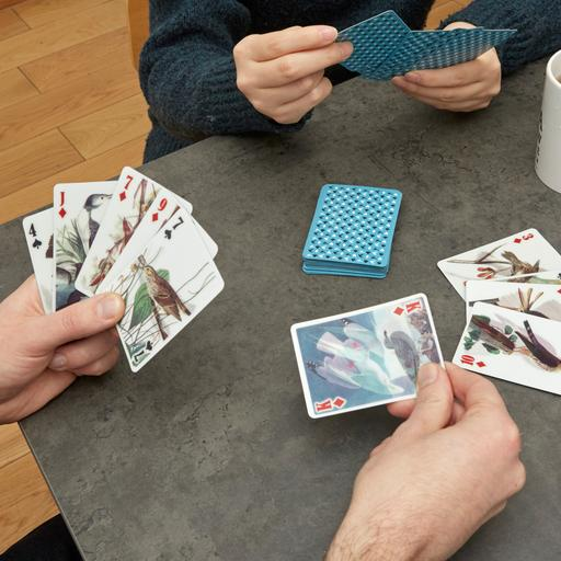 Kikkerland, 3-D Playing Cards: Birds