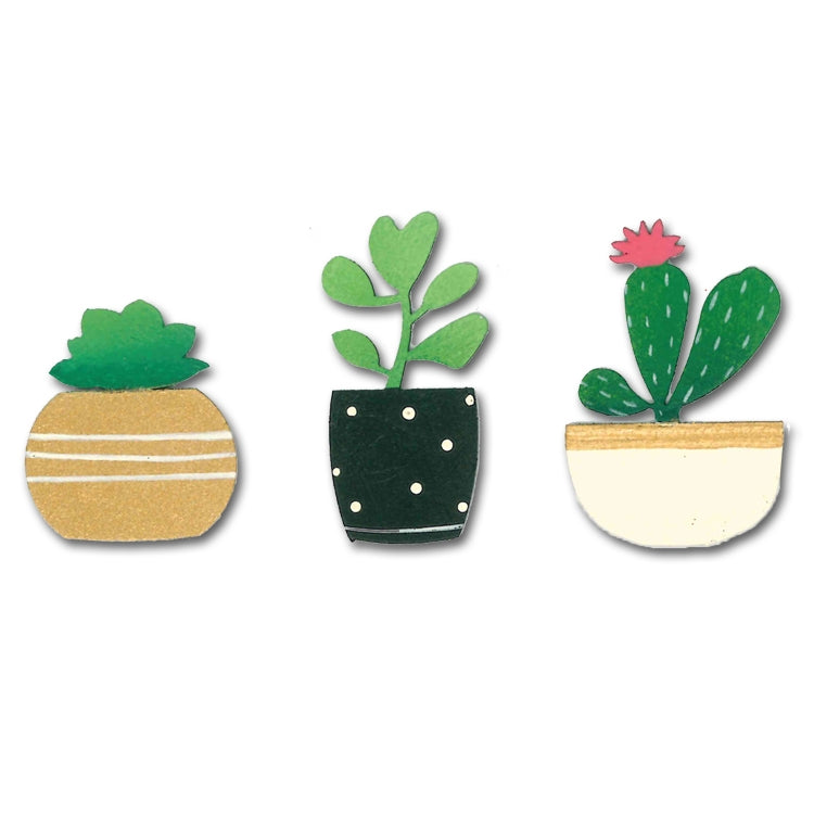Roeda Magnets, Succulents Magnets