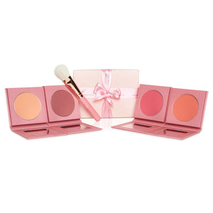 FULL BLUSH COLLECTION & BRUSH