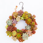 Succulent iron wreath