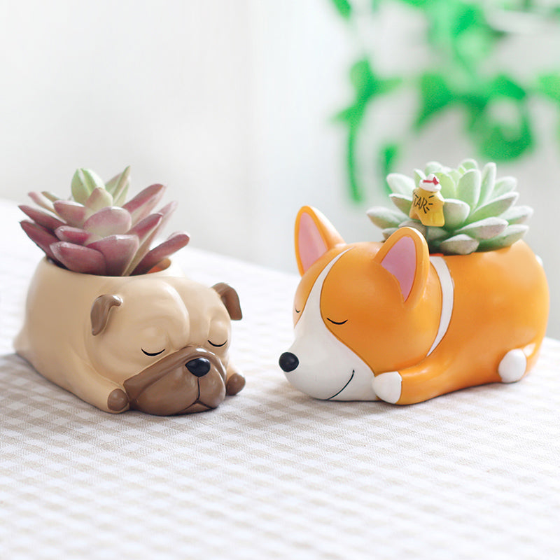 Sleepy Dog Planters - Darling Desert