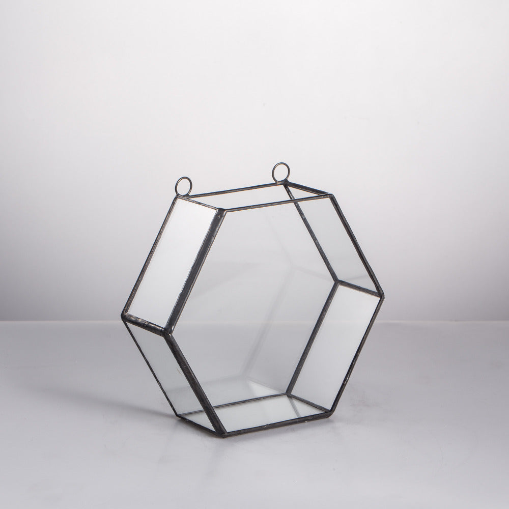 shallow metal and glass hexagonal terrarium