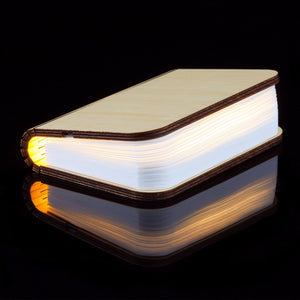 FREE shipping! Wooden Book lamp Led Desk Table Book Lamp  Warm White
