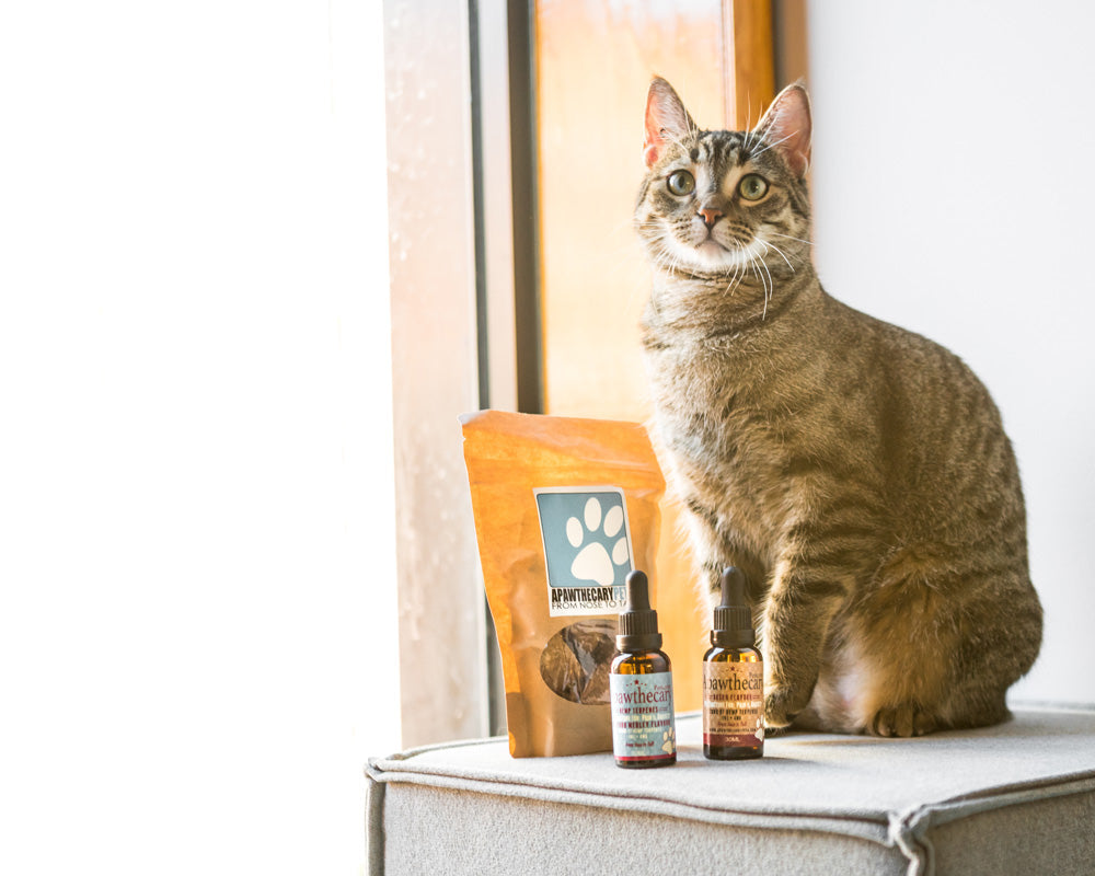Pets and Cannabidiol (CBD)