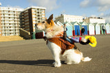 Cowboy Rodeo Dog Costume - Woof Suits