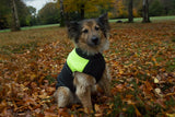 Green One Stripe Body Warmer Dog Coat - Woof Suits