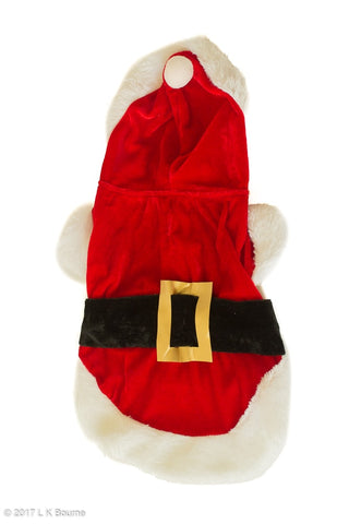 Christmas Santa Dog Outfit - Woof Suits