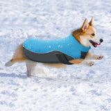 Blue Water Resistant Winter Coat - Woof Suits