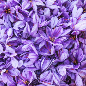 The Science of Saffron