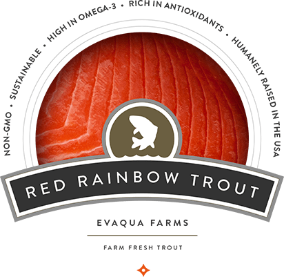 Red Rainbow Trout Evaqua Farms - Farm Fresh Trout