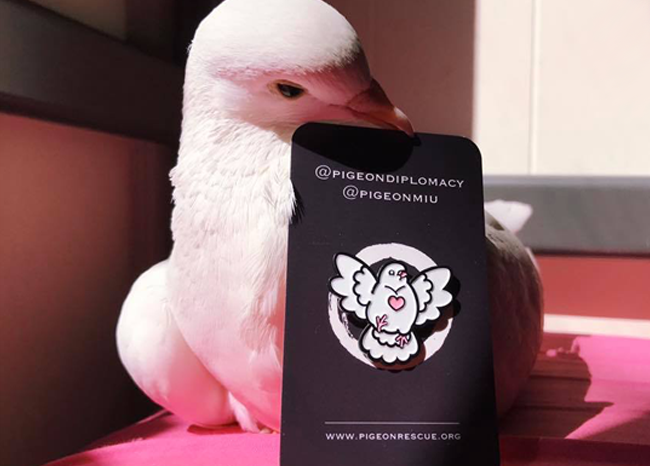 Chubby Pigeon Pin for Palomacy Pigeon Rescue