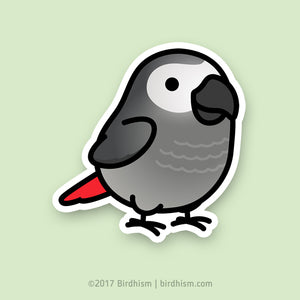 Chubby Congo African Grey Stickers