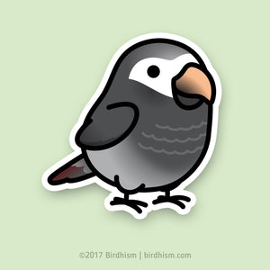 Chubby Timneh African Grey Stickers
