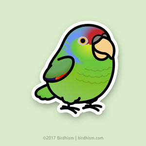 Chubby Lilac-crowned Amazon Stickers
