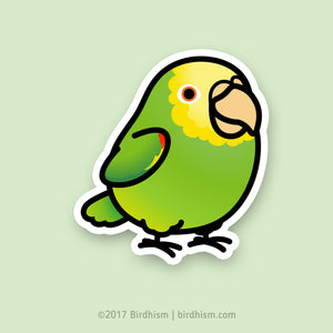 Chubby Double Yellow-headed Amazon Stickers