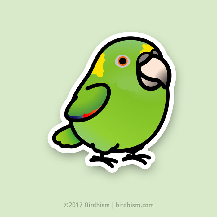 Chubby Yellow-naped Amazon Stickers