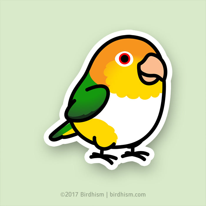 Chubby White Bellied Caique Stickers Birdhism