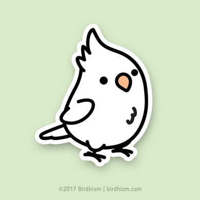 Chubby Albino, White-faced Cockatiel Stickers