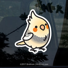 Chubby Pearl Pied Cockatiel Stickers