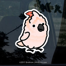 Chubby Moluccan Cockatoo Stickers