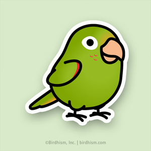 Chubby White-eyed Conure Stickers
