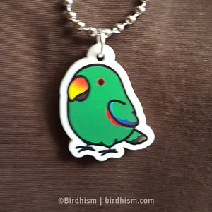 Chubby Male Eclectus Necklace