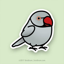 Chubby Grey Indian Ringneck Parakeet Stickers