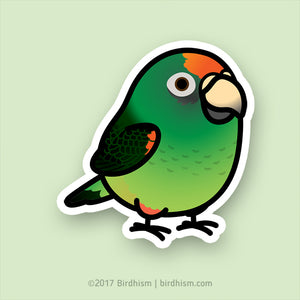 Chubby Jardine's Parrot Stickers