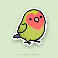 Chubby Lime, Peach-faced Lovebird Stickers