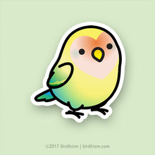 Chubby Sea Green, Pied (Sherbet) Lovebird Stickers