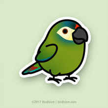 Chubby Illiger's, Blue-winged Macaw Stickers