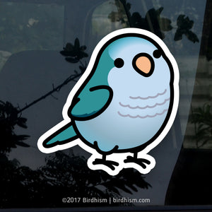 Chubby Blue Quaker Parrot Stickers
