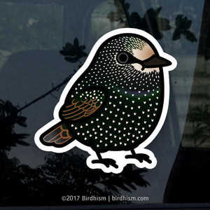 Chubby European Starling Stickers