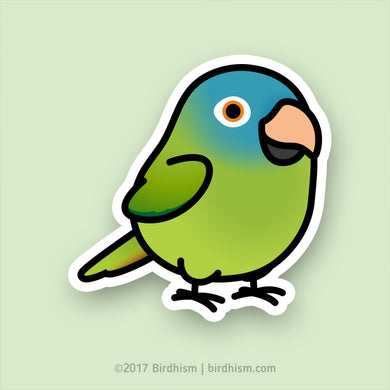 Chubby Blue-crowned Conure Stickers