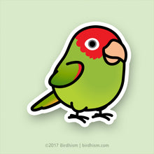 Chubby Cherry-headed Conure Stickers