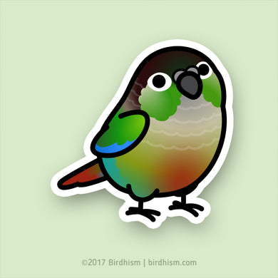 Chubby Green Cheek Conure Stickers