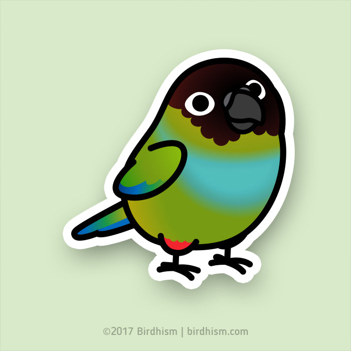 Chubby Nanday Conure Stickers