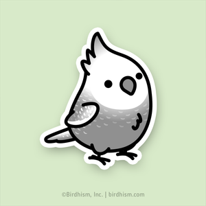 Chubby White-faced Pearl Cockatiel Stickers