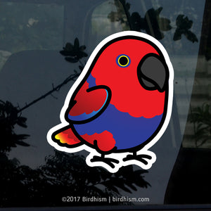 Chubby Eclectus Parrot Female Stickers