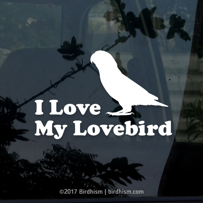 I Love My Lovebird(s) Vinyl Decals